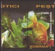 Romania_20050301_fish_a_+_label