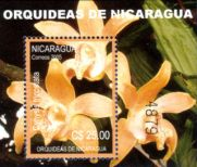 320px-Nicaragua_2005_Orchids_MS