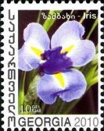 180px-Georgia_2010_Flowers_a