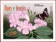 412px-El_Salvador20031023_Flora_and_Insects_MS