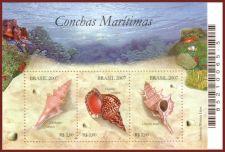 536px-Brazil_20070605_Shells_MS