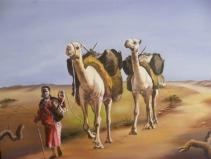 Somali Madar